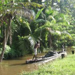 Backwaters Allepey