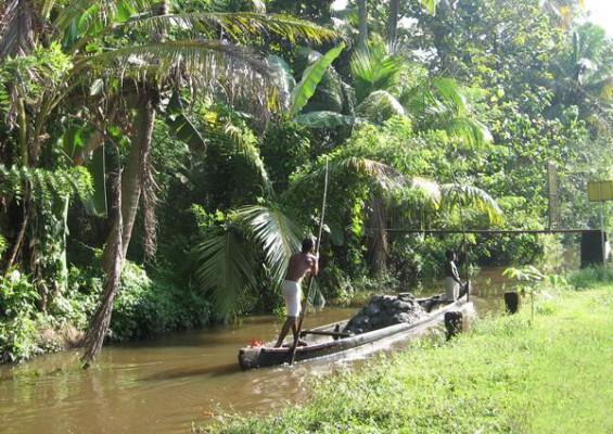 """Résultat de recherche d'images pour """"Paysage du Kerala"""""""