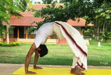 Yoga Maitreyi